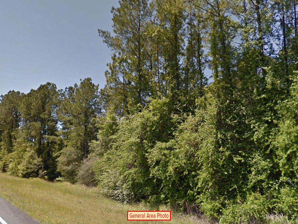 Large Acreage Jackson Florida Tract - Image 3