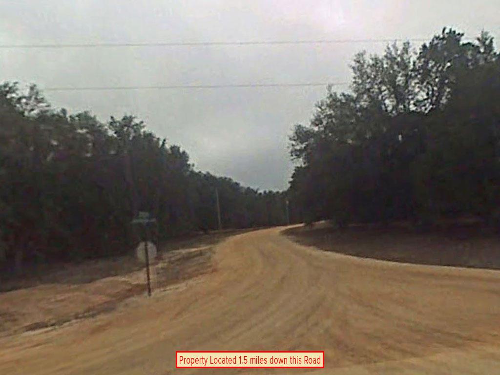Large Acreage Jackson Florida Tract - Image 4