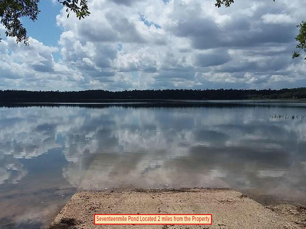 Large Acreage Jackson Florida Tract - Image 5