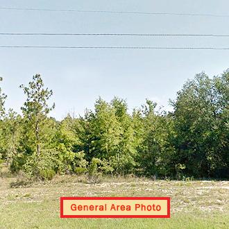Mobile Home Friendly Lot in Interlachen Florida - Image 1