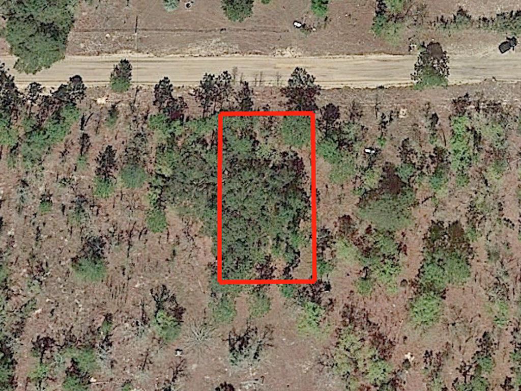 Nearly Quarter Acre Lot In Interlachen - Image 2