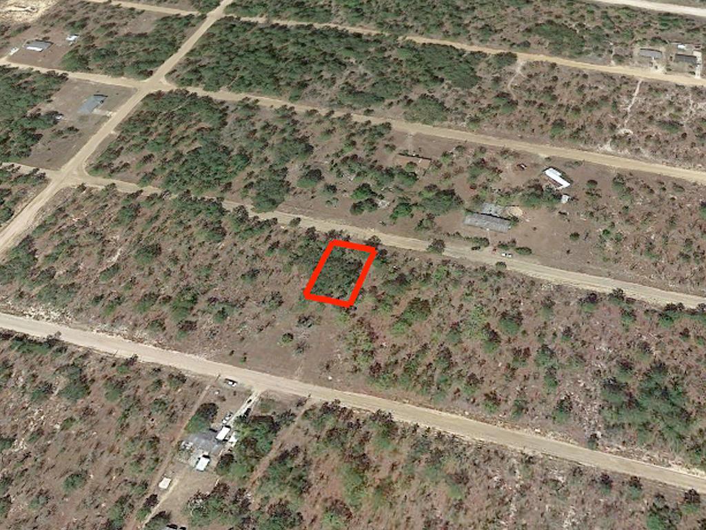 Nearly Quarter Acre Lot In Interlachen - Image 3