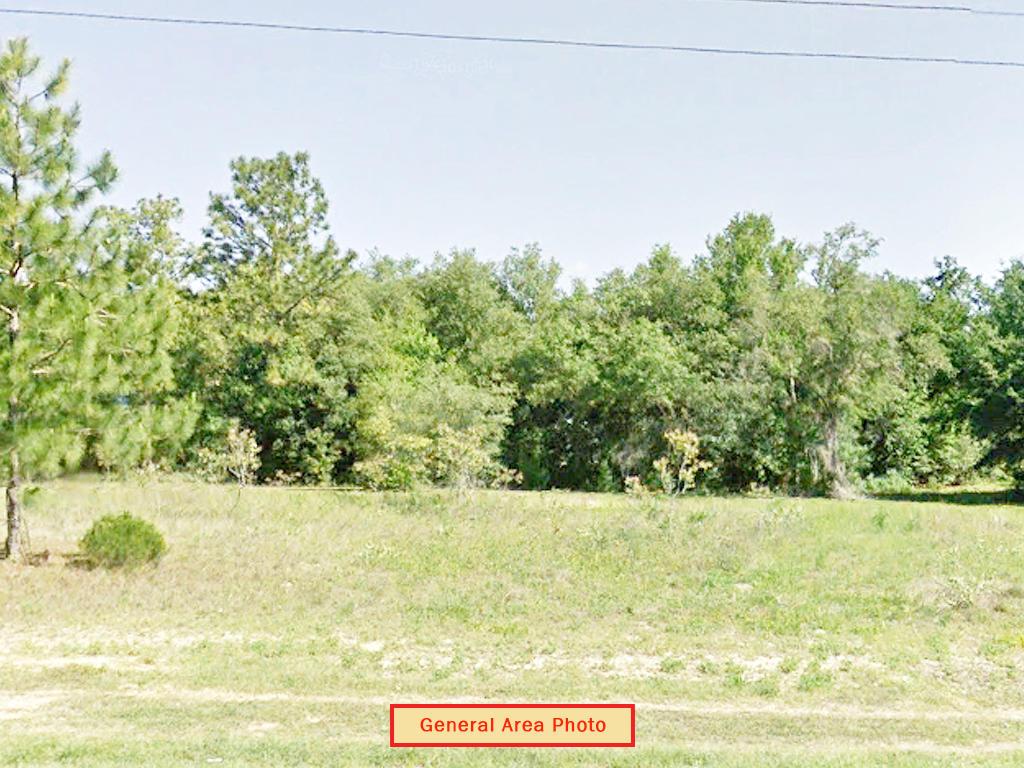 Nearly Quarter Acre Lot In Interlachen - Image 4