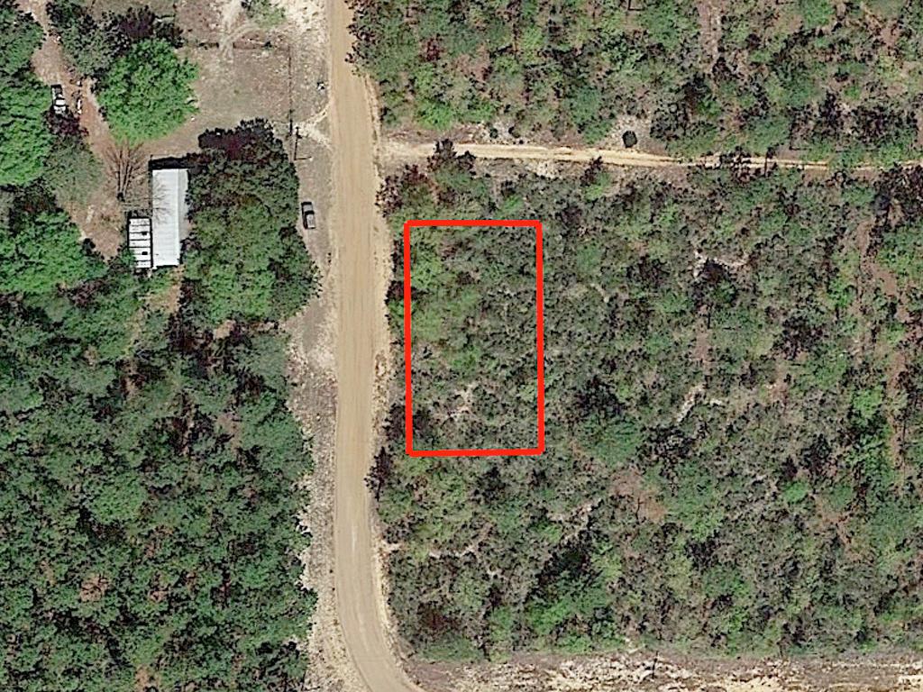 Sunny Property Near Trout Lake - Image 2