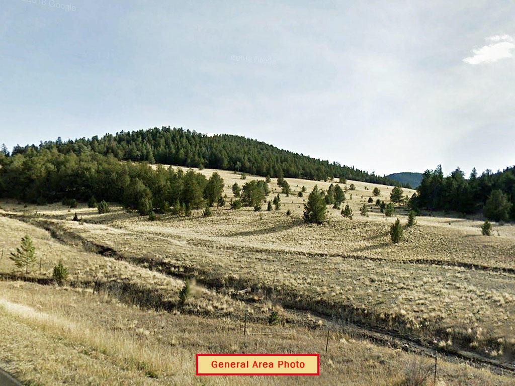 Five Acres in Central Colorado - Image 4