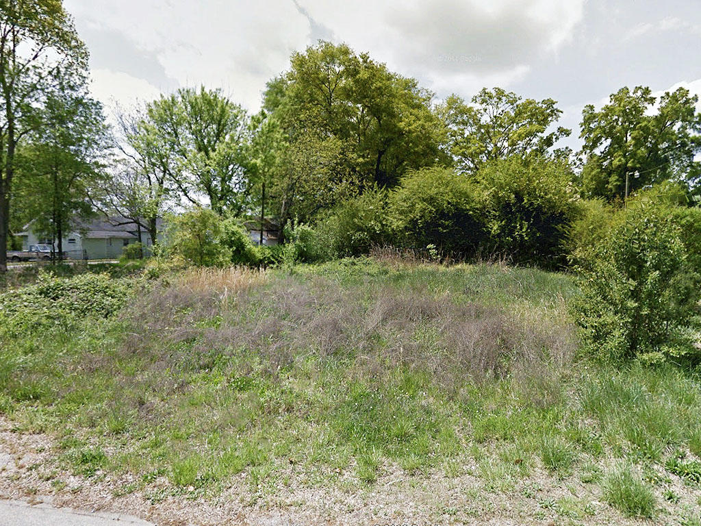 Residential Lot in South Carolina With All Utilities - Image 4