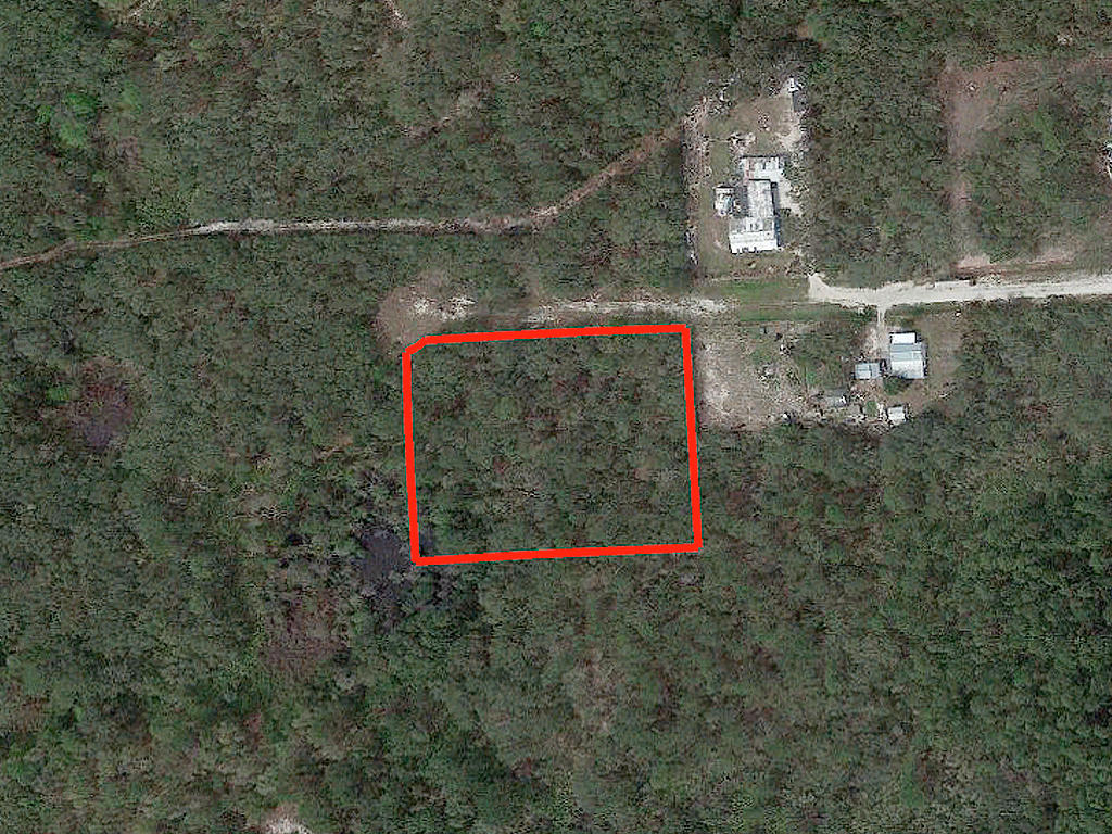 Two and A Half Acres in Crescent City - Image 2