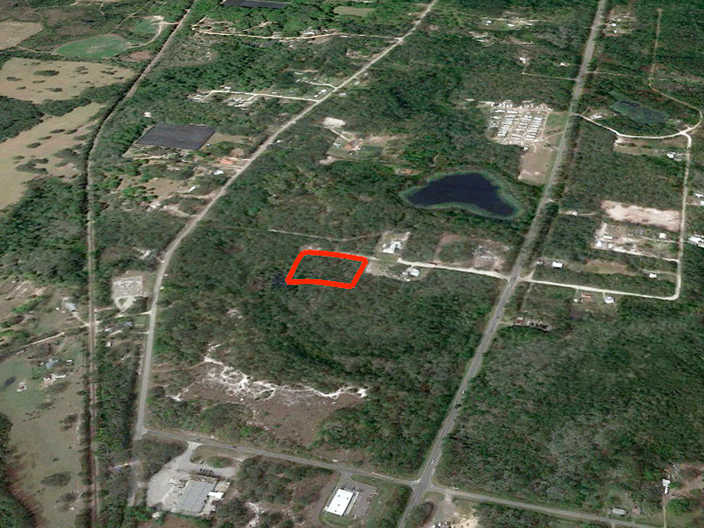 Two and A Half Acres in Crescent City - Image 3