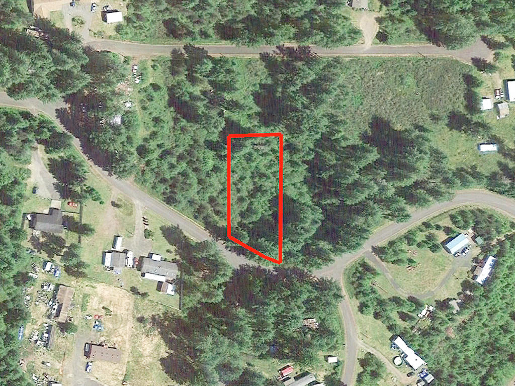 Secluded Land Opportunity in Beautiful Pacific Northwest - Image 2