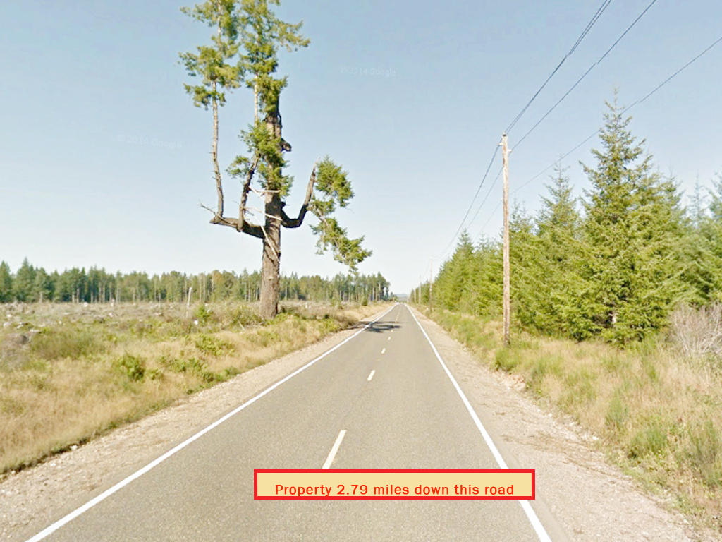 Secluded Land Opportunity in Beautiful Pacific Northwest - Image 5