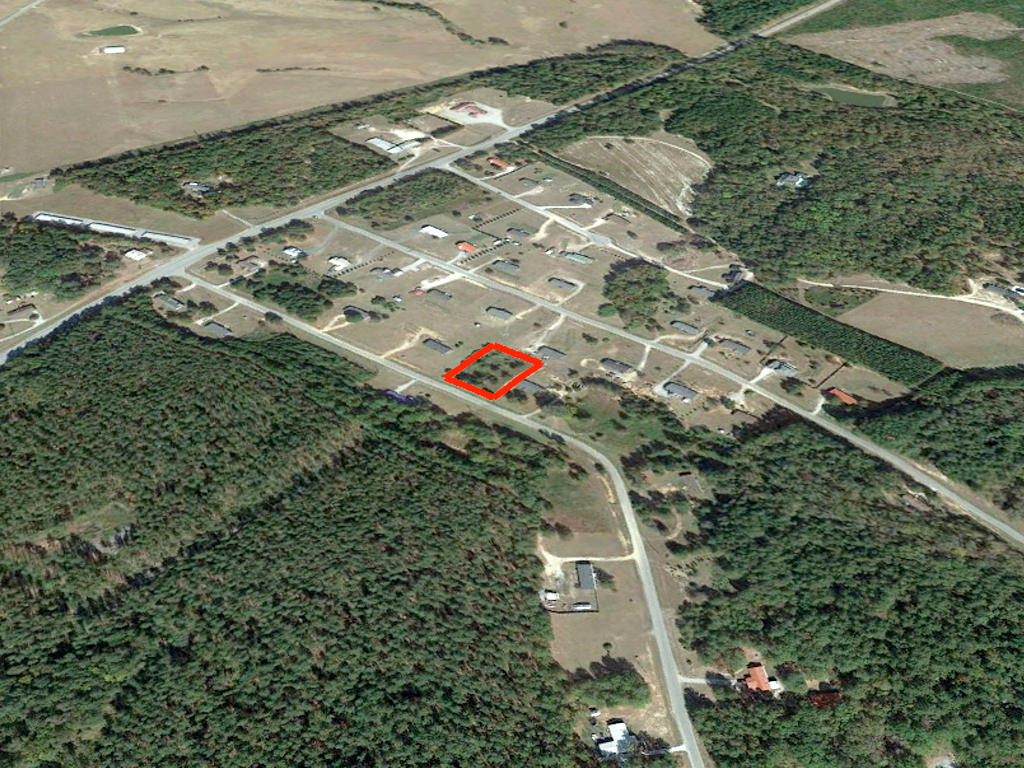Nearly 3 Quarters of an Acre in Beautiful Peach State - Image 2