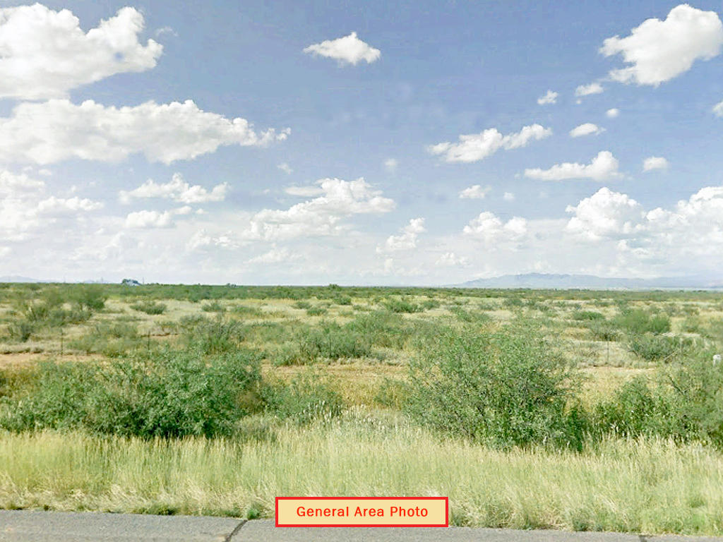 Rare Desert Gem of Two Lots Sold as One - Image 3