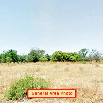 Rare Desert Gem of Two Lots Sold as One - Image 0