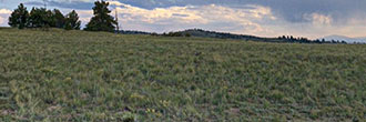 3 Stunning Acres in Secluded Colorado Wilderness