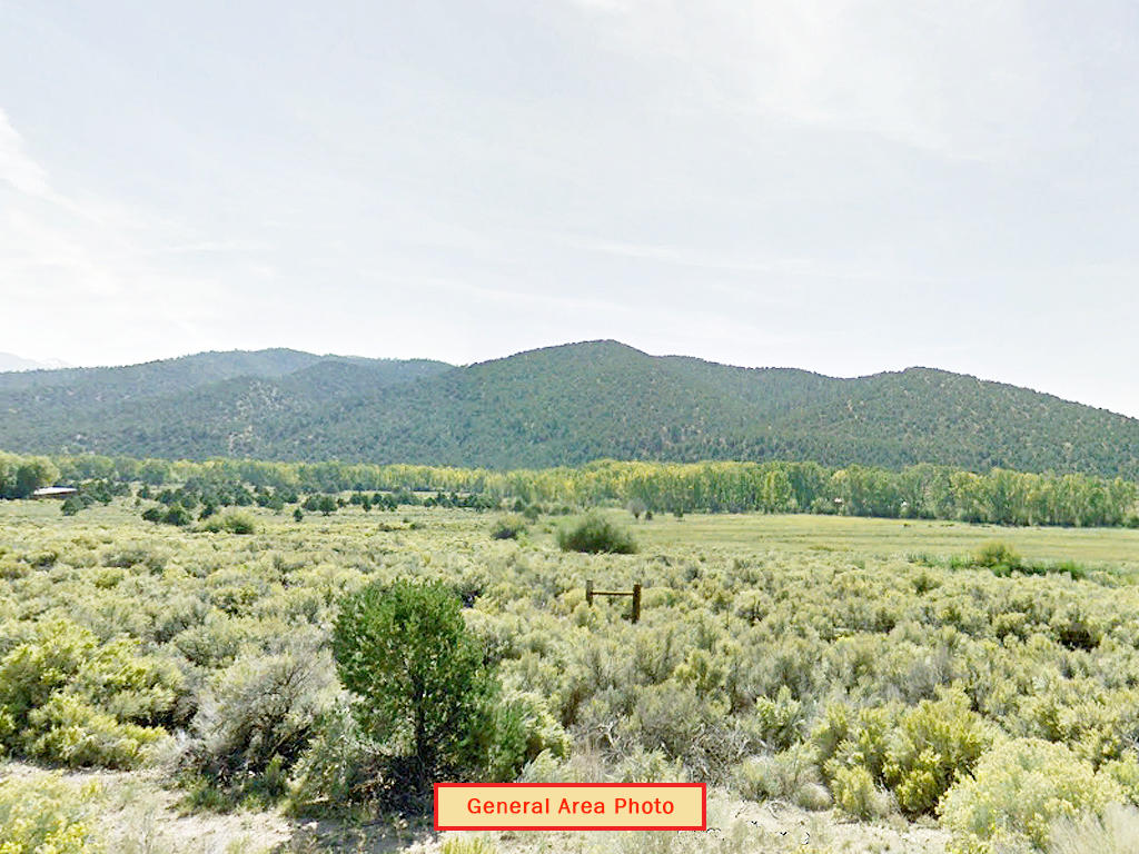 Majestic Twelve Acres in Foothills of Sange de Cristo Mountains - Image 3