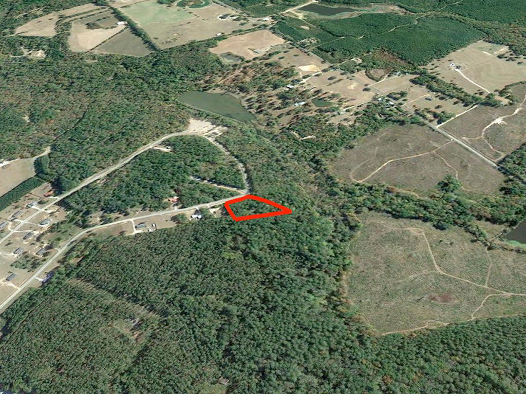 Rural Georgia Acreage in Quaint Subdivision - Image 3