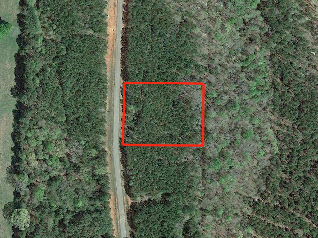 Gorgeous 2 Acres Outside of Woodbury - Image 1