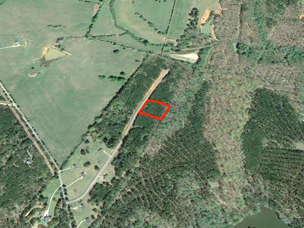 Gorgeous 2 Acres Outside of Woodbury - Image 2