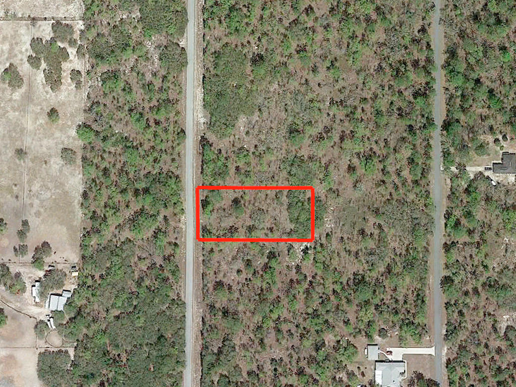 Spacious One Acre with Trees Between Dunnellon and Williston - Image 1