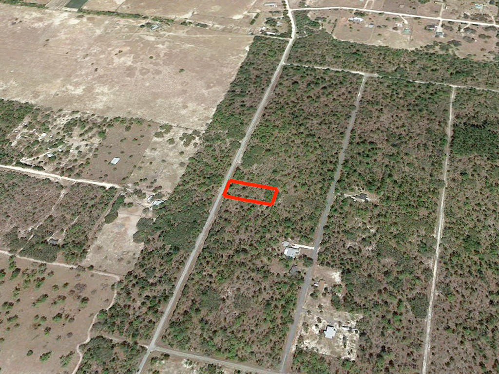 Spacious One Acre with Trees Between Dunnellon and Williston - Image 3