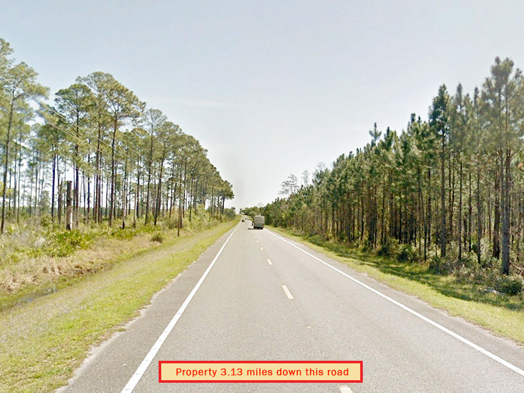 Spacious One Acre with Trees Between Dunnellon and Williston - Image 5