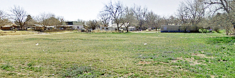 Cleared Half Acre Lot in Sunny Lone Star State