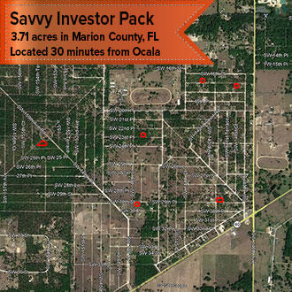 Bulk up Your Investment Portfolio With This Savvy Investor Pack - Image 1