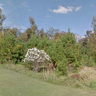 Florida Homesite in Spectacular Location - Image 1