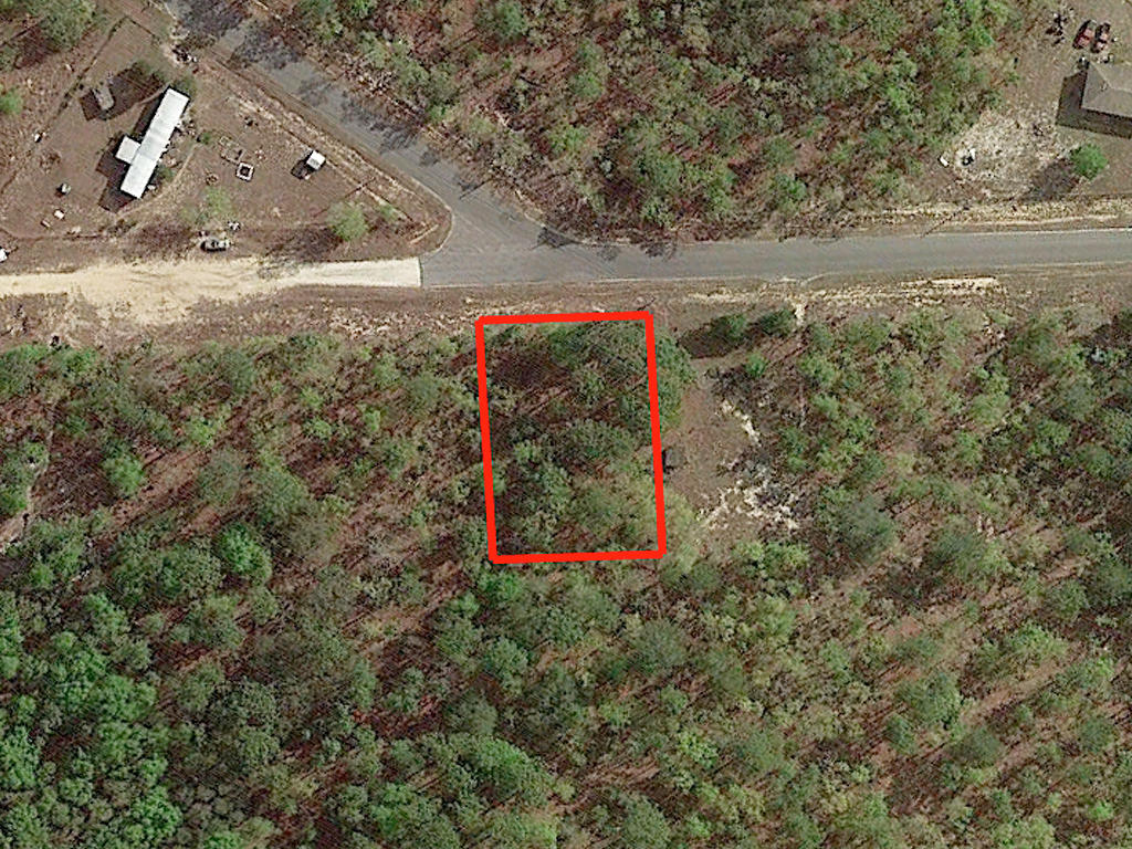 Great Lot in Keystone Heights Florida - Image 2