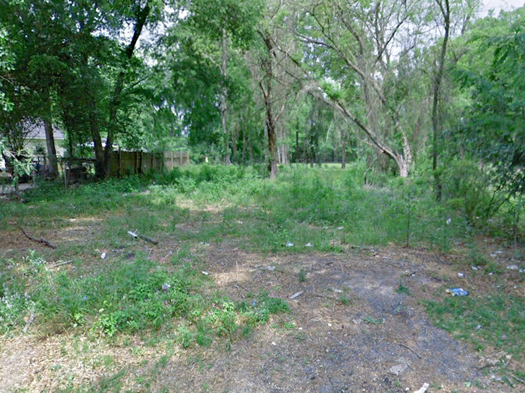 Rare Two Lot Parcel on Spacious Half Acre - Image 4