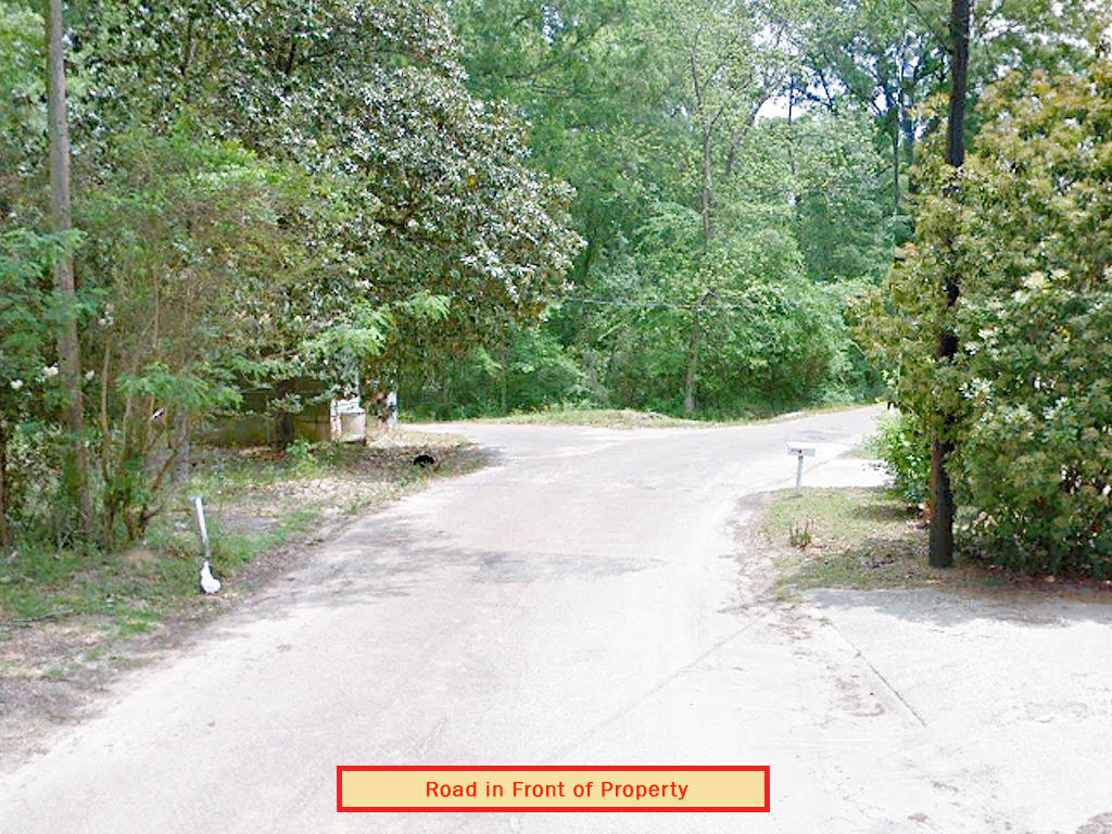Rare Two Lot Parcel on Spacious Half Acre - Image 5