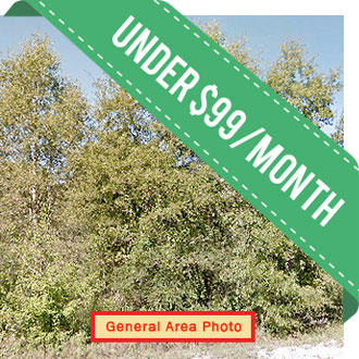 Over an acre in scenic area - Image 0