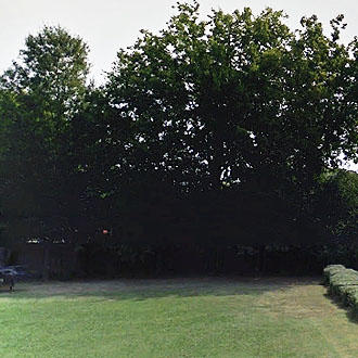 Manicured City Lot in Mixed Commercial and Residential Area - Image 1