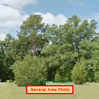 Beautiful Half Acre in Historic Antioch - Image 1