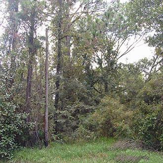 Baldwin Florida Residential Gem - Image 0