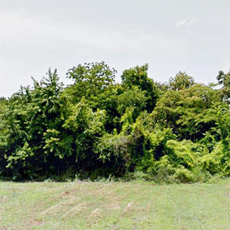 Southern Jewel on Spacious Half Acre - Image 1