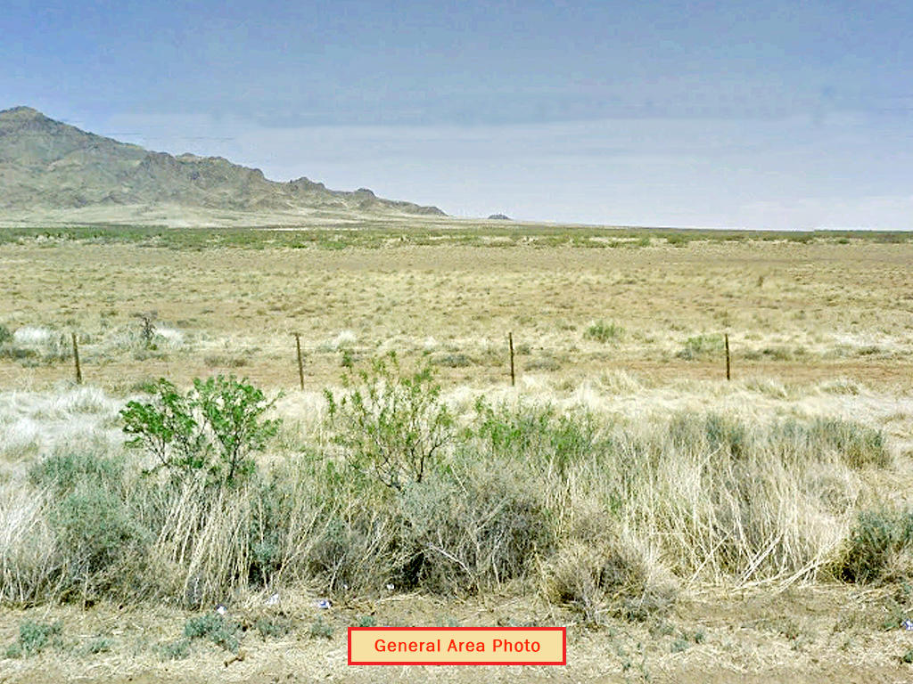 Spacious Half Acre of Rural Desert Land - Image 3