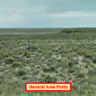 Forty Acre Property Near Petrified Forest - Image 1