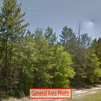 Nearly Two Acre Alford Florida Property - Image 1