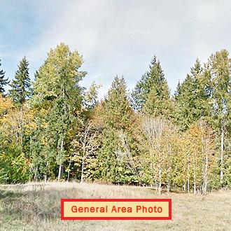 Olympic Peninsula Property in Beautiful Area - Image 1