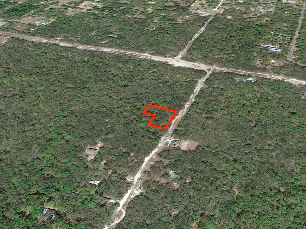 Acreage Property in Rural Area Close to Orlando - Image 2