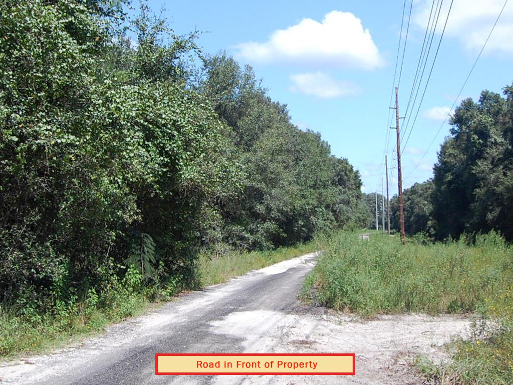 Acreage Property in Rural Area Close to Orlando - Image 4
