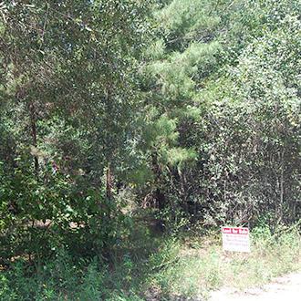 Acreage Property in Rural Area Close to Orlando - Image 1