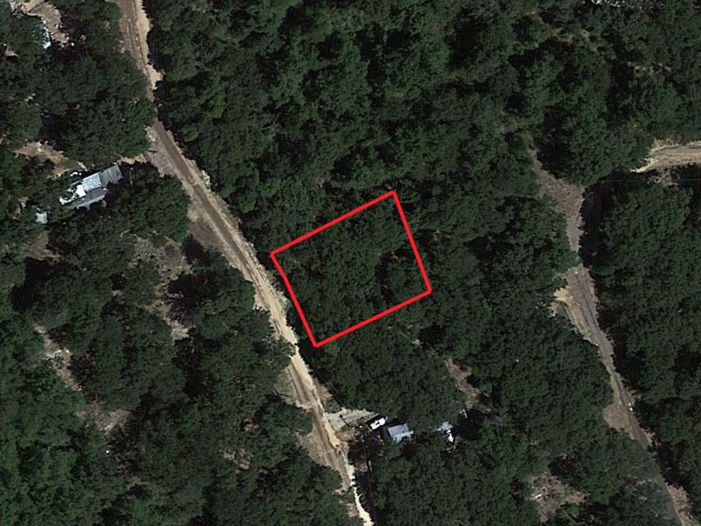 Quarter Acre Lot in Mineola - Image 1