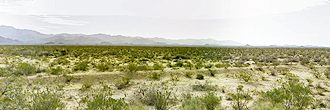 2.2 Acre Property About 8 Miles Northeast of Yucca
