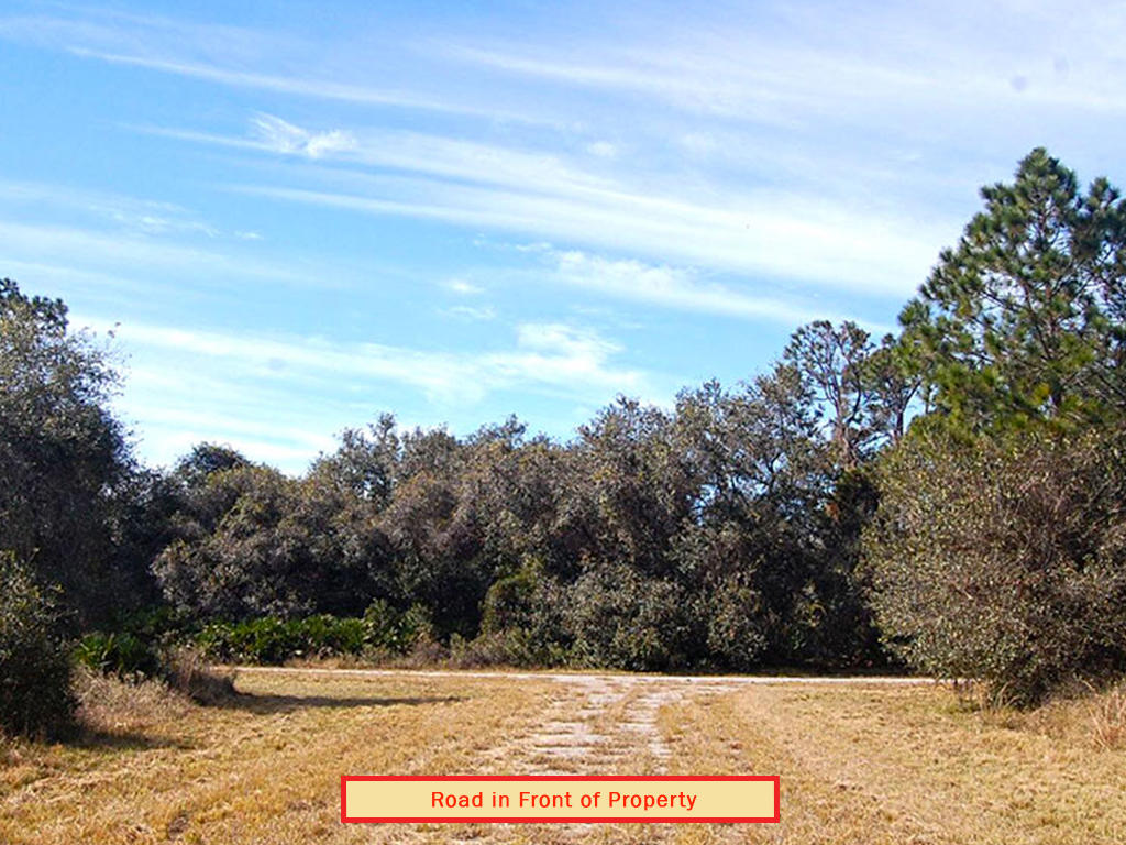 Lush Land Opportunity Near Florida Coast - Image 4