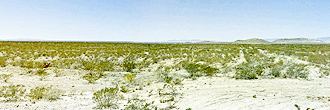 Alluring Desert Half Acre Lot Near Hueco Mountains