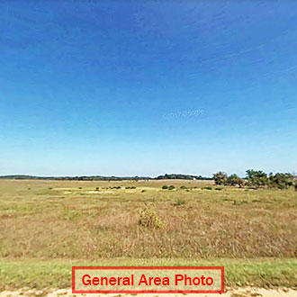 Just Under 1 Acre Todd County Property - Image 1