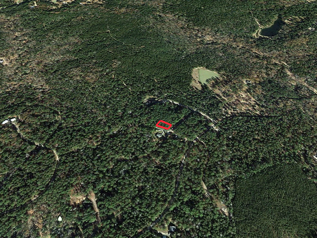 Wooded Eastern Texas Property - Image 3