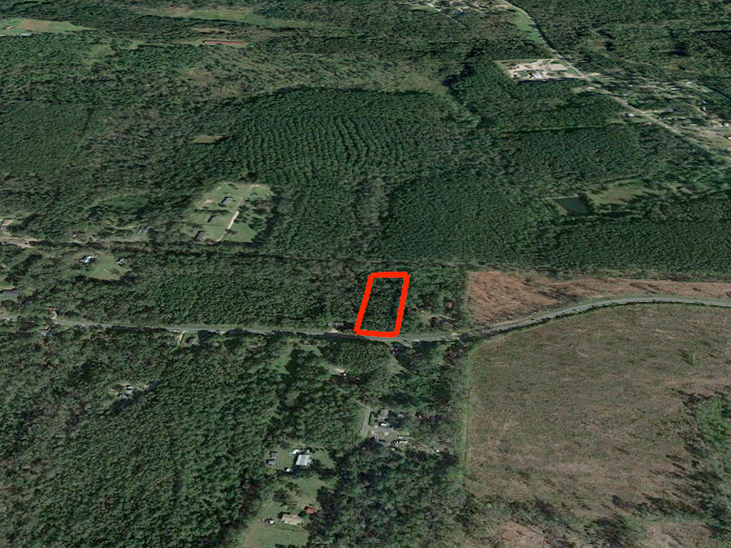 Over 2 acres near Tallahassee - Image 3